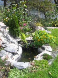 Декоративные деревья и многолетние кустарники