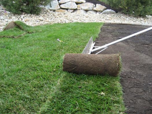Рекомендации по укладке рулонного газона